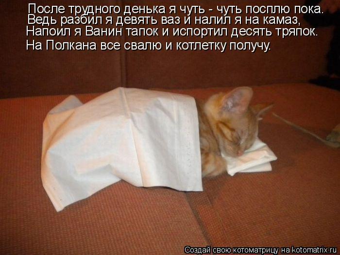 Котоматрица: После трудного денька я чуть - чуть посплю пока. Ведь разбил я девять ваз и налил я на камаз, Напоил я Ванин тапок и испортил десять тряпок. На