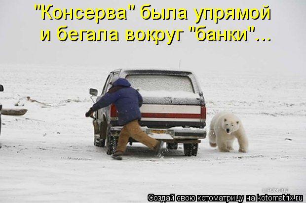 """Котоматрица: """"Консерва"""" была упрямой  и бегала вокруг """"банки""""..."""