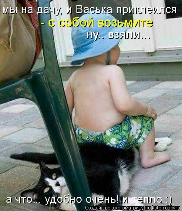 Котоматрица: ну.. взяли... а что!.. удобно очень! и тепло :) мы на дачу, и Васька приклеился - с собой возьмите