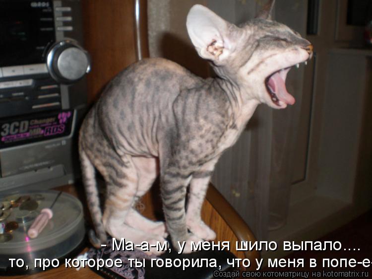 http://kotomatrix.ru/images/lolz/2012/01/10/1080192.jpg
