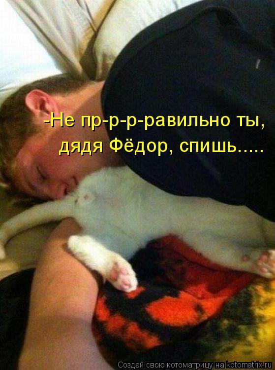 Котоматрица - -Не пр-р-р-равильно ты, дядя Фёдор, спишь.....
