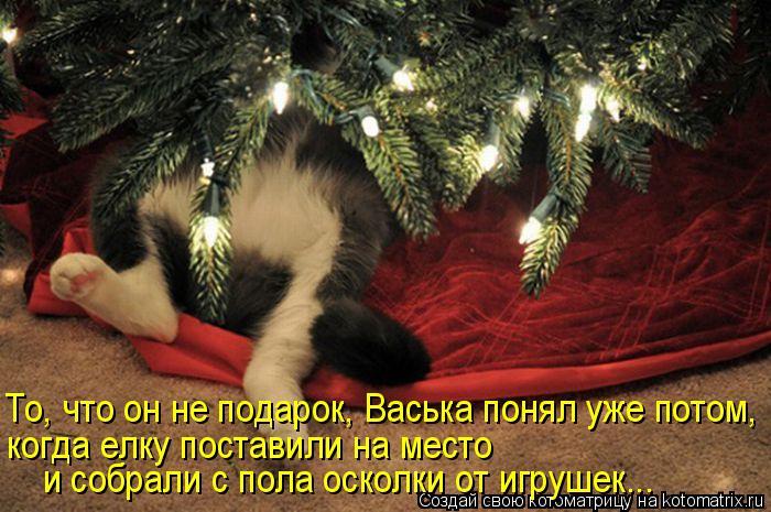 То, что он не подарок, Васька понял уже потом, когда елку поставили на место и собрали с пола осколки от игрушек...
