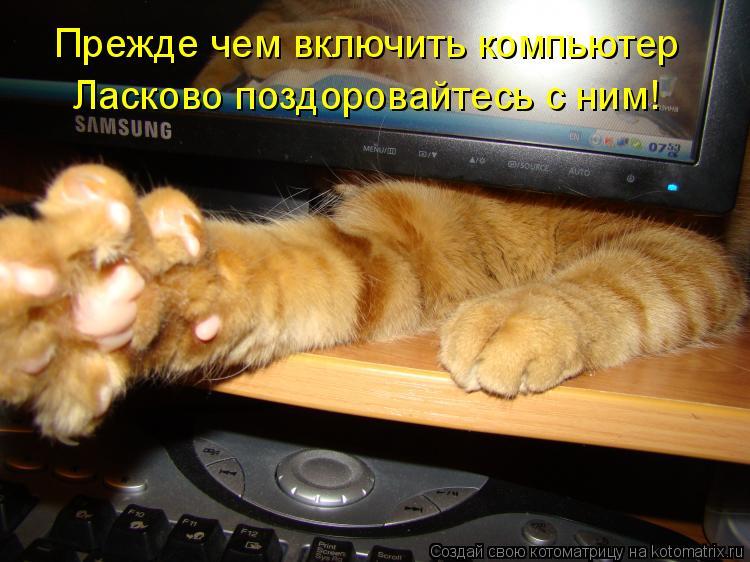 http://kotomatrix.ru/images/lolz/2012/01/12/1081972.jpg