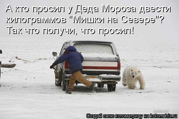 """Котоматрица: А кто просил у Деда Мороза двести  килограммов """"Мишки на Севере""""? Так что получи, что просил!"""