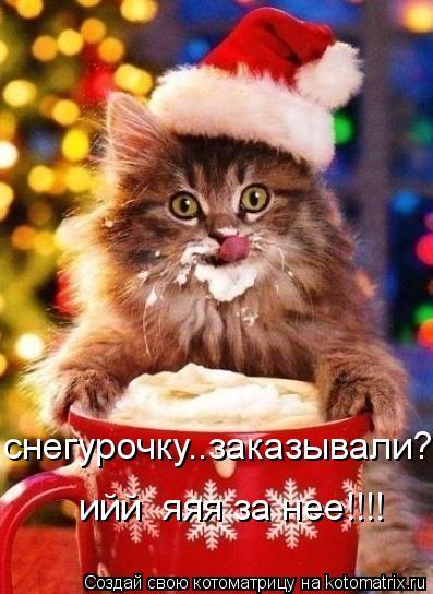 Котоматрица: снегурочку..заказывали??!!! ийй  яяя за нее!!!!