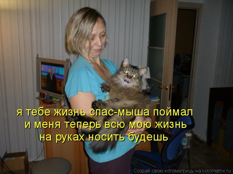 Котоматрица: я тебе жизнь спас-мыша поймал и меня теперь всю мою жизнь на руках носить будешь