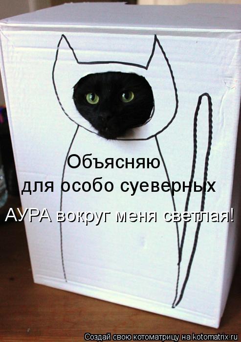 Котоматрица: для особо суеверных Объясняю АУРА вокруг меня светлая!