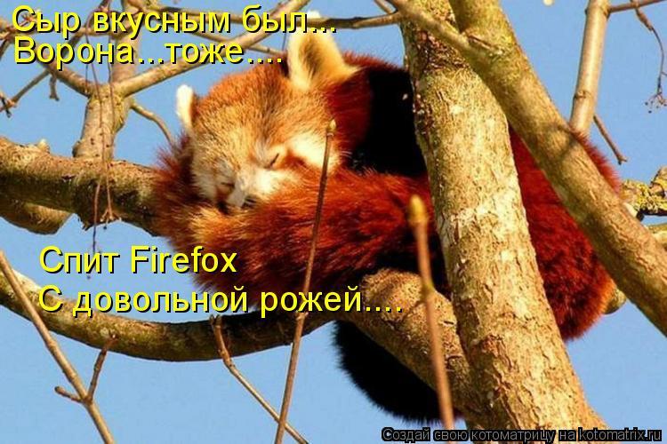 Котоматрица: Сыр вкусным был... Ворона...тоже.... Спит Firefox С довольной рожей....