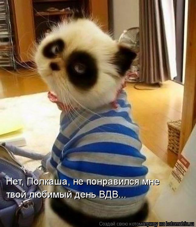 Котоматриця!)))) - Страница 9 1084614