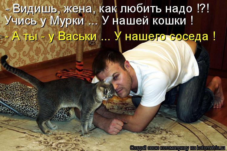 Котоматрица: - Видишь, жена, как любить надо !?! Учись у Мурки ... У нашей кошки ! - А ты - у Васьки ... У нашего соседа !