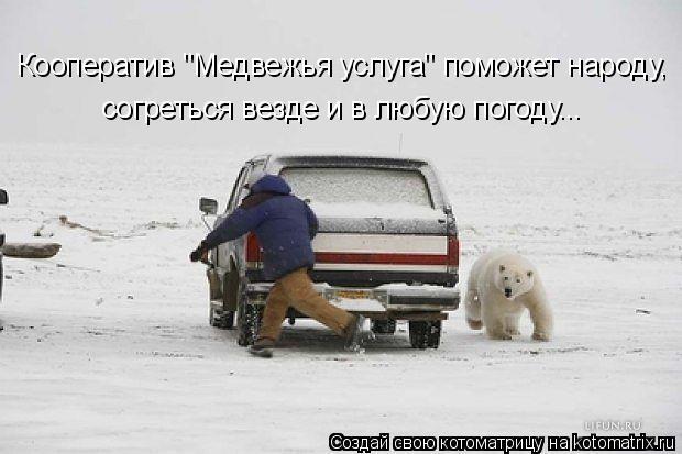 """Котоматрица: Кооператив """"Медвежья услуга"""" поможет народу, согреться везде и в любую погоду..."""