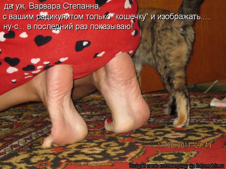 """Котоматрица: да уж, Варвара Степанна, с вашим радикулитом только """"кошечку"""" и изображать..... ну-с... в последний раз показываю!"""