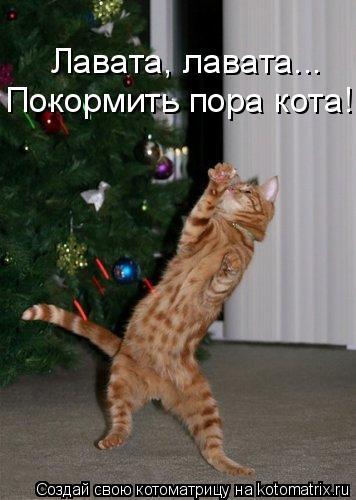 Котоматрица: Покормить пора кота! Лавата, лавата...