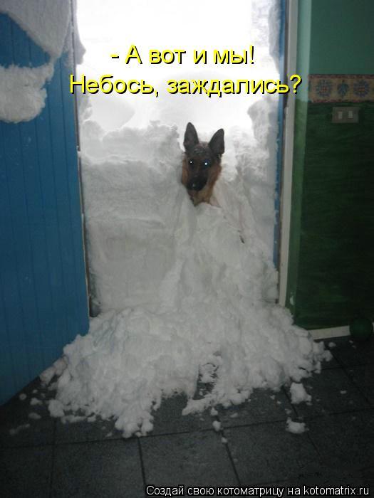 Котоматрица: - А вот и мы! Небось, заждались?
