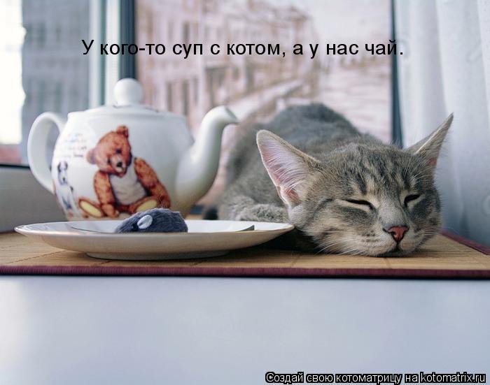 Котоматрица: У кого-то суп с котом, а у нас чай.
