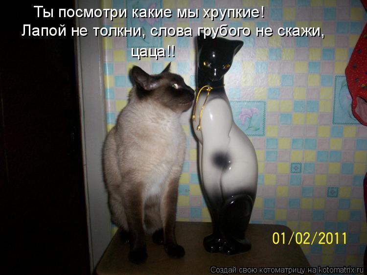 http://kotomatrix.ru/images/lolz/2012/01/17/1086097.jpg