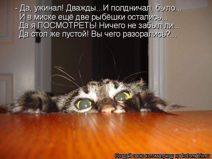 Котоматрица: - Да, ужинал! Дважды...И полдничал, было... И в миске ещё две рыбёшки остались... Да я ПОСМОТРЕТЬ! Ничего не забыл ли... Да стол же пустой! Вы чего р
