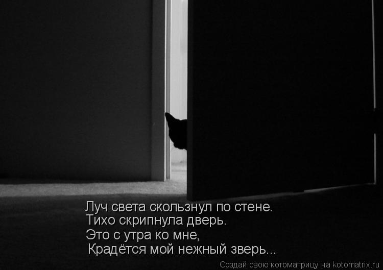 Котоматрица: Луч света скользнул по стене. Тихо скрипнула дверь. Это с утра ко мне, Крадётся мой нежный зверь...