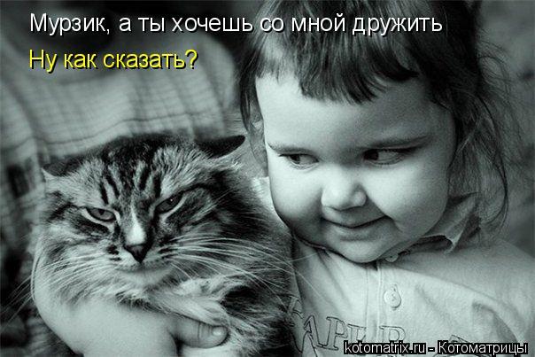 Котоматрица: Мурзик, а ты хочешь со мной дружить Ну как сказать?
