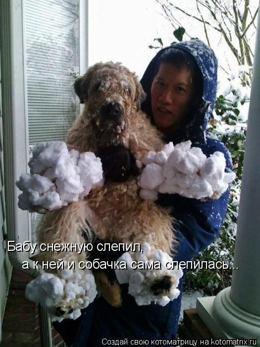 Котоматрица: Бабу снежную слепил, а к ней и собачка сама слепилась...
