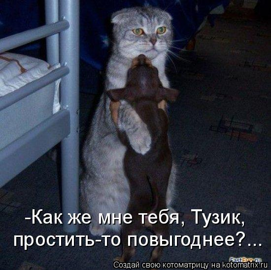 Котоматрица: -Как же мне тебя, Тузик, простить-то повыгоднее?...