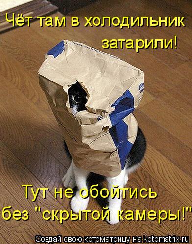 """Котоматрица: Чёт там в холодильник  затарили! Тут не обойтись без """"скрытой камеры!"""""""