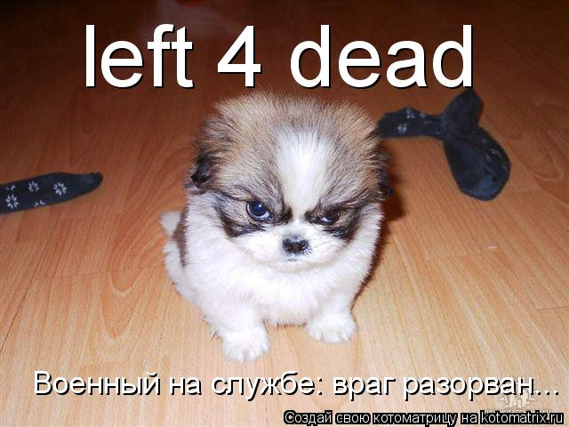 Котоматрица: left 4 dead Военный на службе: враг разорван...