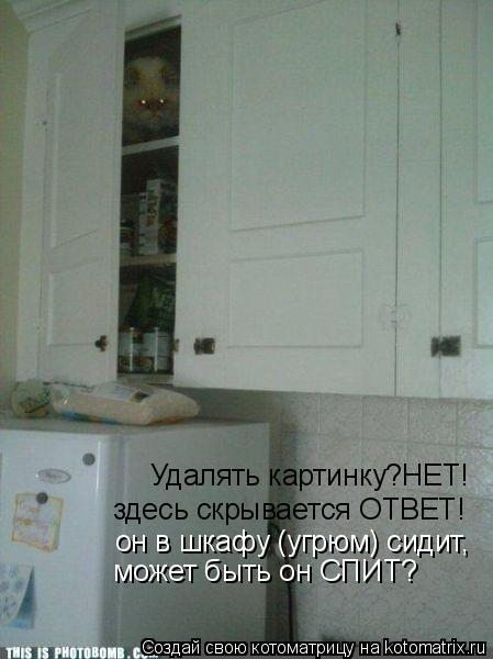 Котоматрица: Удалять картинку?НЕТ! здесь скрывается ОТВЕТ! он в шкафу (угрюм) сидит, может быть он СПИТ?