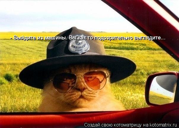 Котоматрица: - Выйдите из машины. Вы как то подозрительно выглядите...