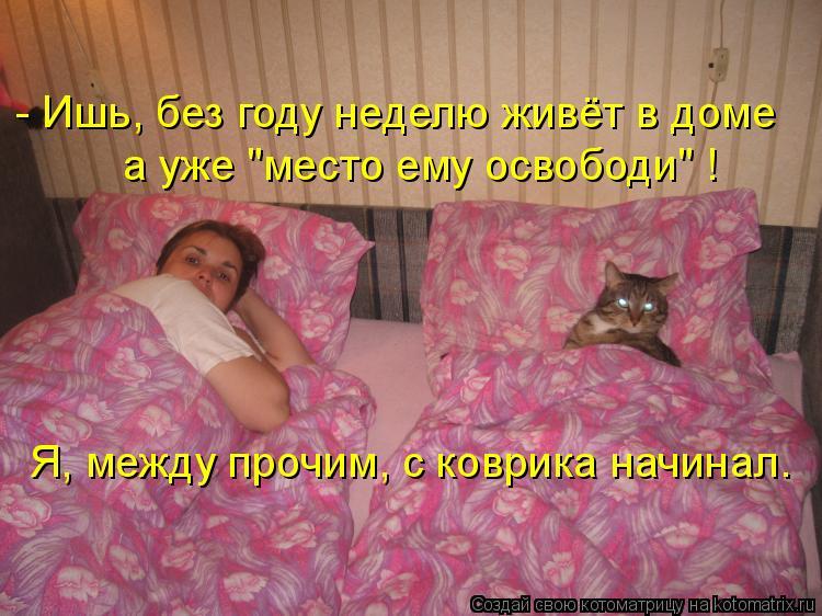 - Ишь, без году неделю живёт в доме а уже