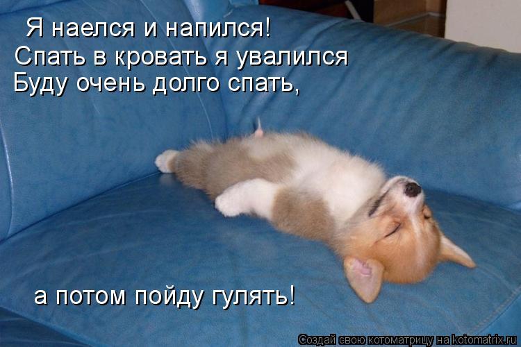 http://kotomatrix.ru/images/lolz/2012/01/21/1088828.jpg
