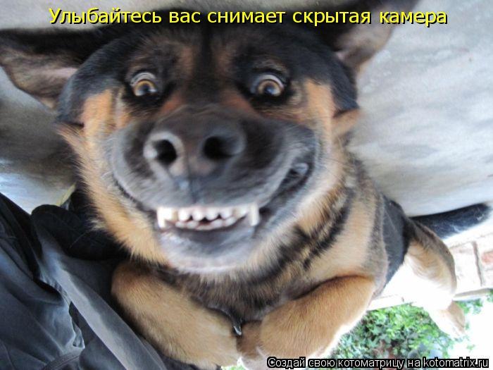 Скрытая камера улыбайтесь