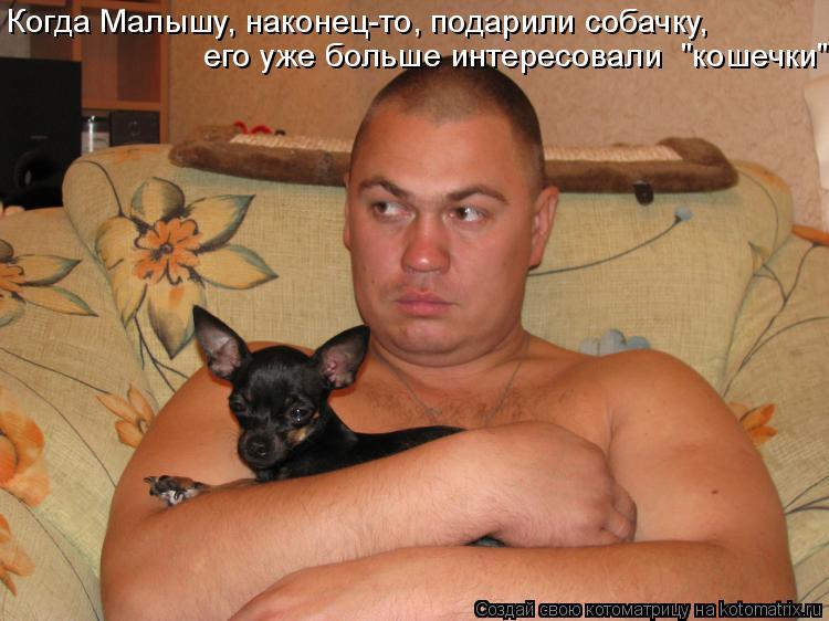 """Котоматрица: Когда Малышу, наконец-то, подарили собачку, его уже больше интересовали  """"кошечки"""""""