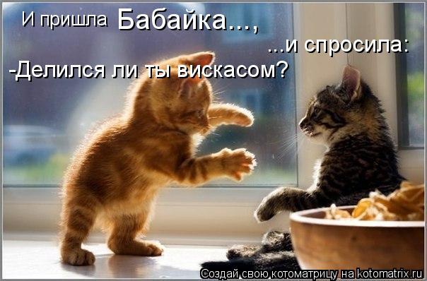 Котоматрица: И пришла  Бабайка..., ...и спросила: -Делился ли ты вискасом?