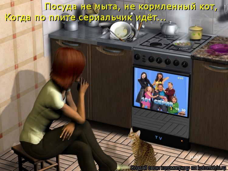 Котоматрица: Посуда не мыта, не кормленный кот, Когда по плите сериальчик идёт...