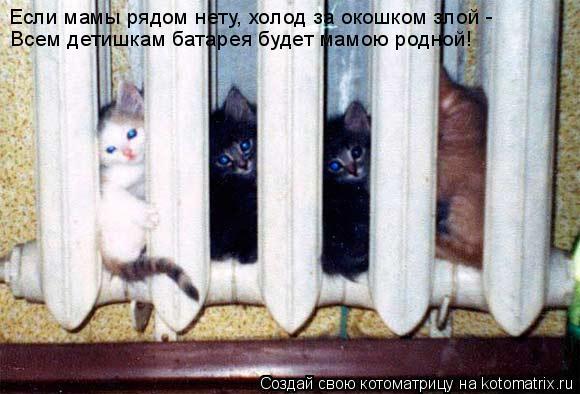 Котоматрица: Если мамы рядом нету, холод за окошком злой -  Всем детишкам батарея будет мамою родной!