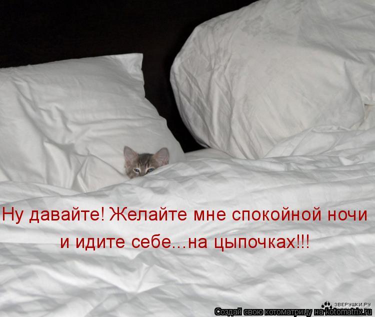 Пацанские пожелания спокойной ночи