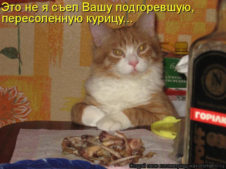 Котоматрица: Это не я съел Вашу подгоревшую, пересоленную курицу...