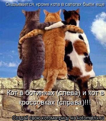 Котоматрица: Оказывается, кроме кота в сапогах были еще Кот в ботинках (слева) и кот в  кроссовках (справа)!!!