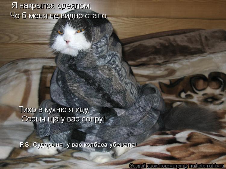 Котоматрица: Тихо в кухню я иду, Сосыч ща у вас сопру! Я накрылся одеялом, Чо б меня не видно стало... P.S. Сударыня, у вас колбаса убежала!