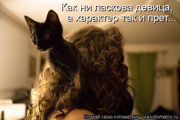 Котоматрица - Как ни ласкова девица, а характер так и прет...