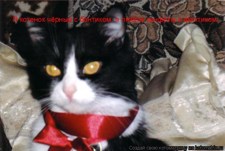 Котоматрица: Я котенок чёрный с бантиком, я люблю конфеты с фантиком