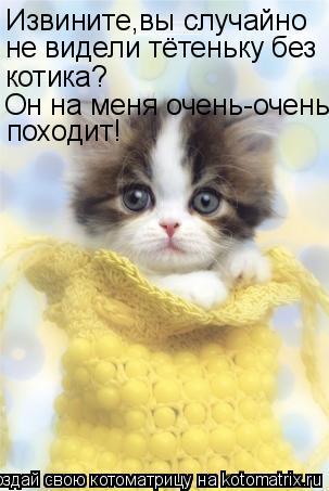 Котоматрица: Извините,вы случайно  не видели тётеньку без котика? Он на меня очень-очень походит!