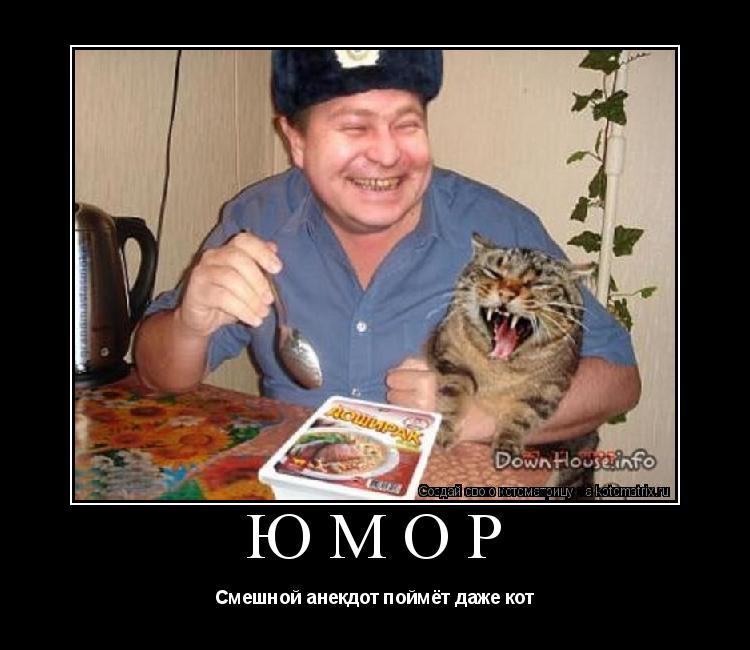 Котоматрица: юмор Смешной анекдот поймёт даже кот