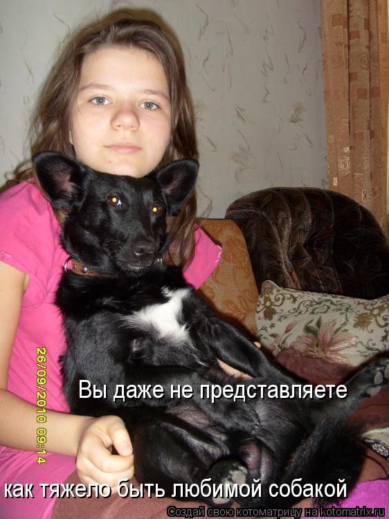 Котоматрица: как тяжело быть любимой собакой Вы даже не представляете