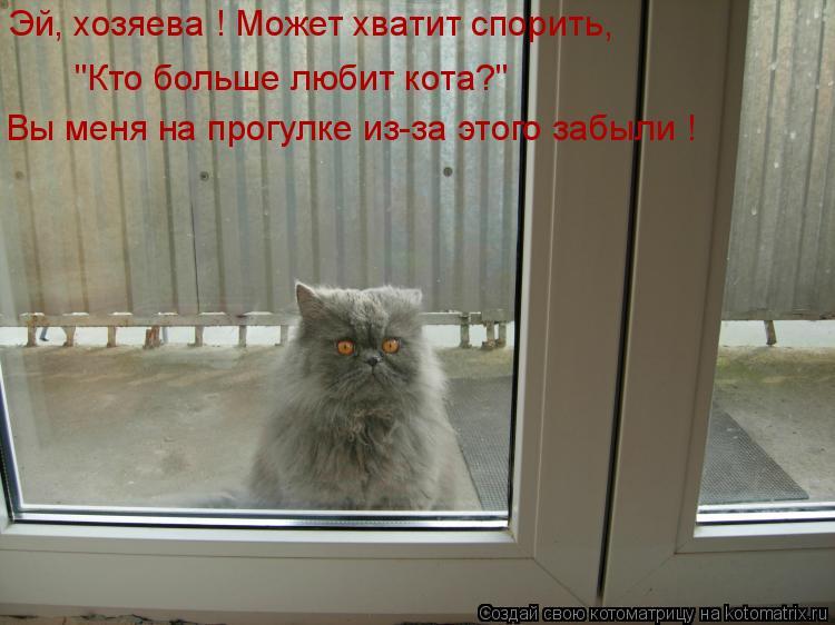 """Котоматрица: Эй, хозяева ! Может хватит спорить, """"Кто больше любит кота?"""" Вы меня на прогулке из-за этого забыли !"""