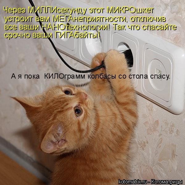 Котоматрица: Через МИЛЛИсекунду этот МИКРОшкет устроит вам МЕГАнеприятности, отключив все ваши НАНОтехнологии! Так что спасайте срочно ваши ГИГАбайты!