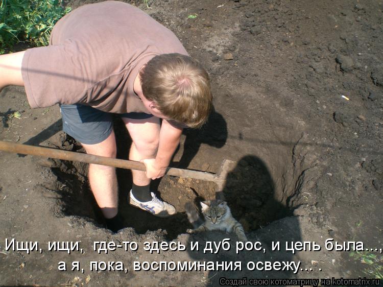 Котоматрица: Ищи, ищи,  где-то здесь и дуб рос, и цепь была..., а я, пока, воспоминания освежу... .