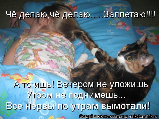 Котоматрица: Чё делаю,чё делаю.....Заплетаю!!!! А то ишь! Вечером не уложишь Утром не поднимешь... Все нервы по утрам вымотали!