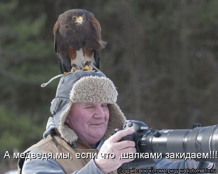 Котоматрица: А медведя,мы, если что ,шапками закидаем!!!!!!!